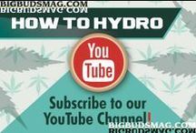 """How to Hydro - Tips/Videos / Now you have professional marijuana growing videos to help your marijuana plants be healthier and more productive. This series is called """"How To Hydroponics"""". Each episode shows you professional marijuana grow rooms and walks you through all the information you need to improve your bud weight, THC percentages, and grow room efficiencies."""