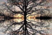 Amasing nature / Beautiful fotos
