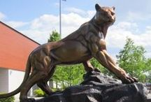 Got Panther School Spirit? / Get in the school spirit as we prepare for Alumni Day!
