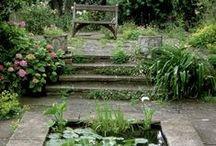 robótka z ogródka / pomysłowe aranżacje do ogrodu