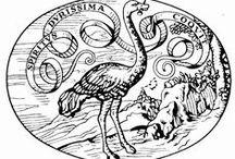 loghi case editrici / Da dove vengono i loghi delle case editrici italiane? Perché Einaudi ha uno struzzo? Il simbolo di Adelphi cos'è? E perché E/O ha scelto una cicogna?