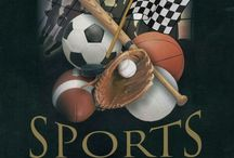 Sports Fan / Love Sports and wanted a place were I can show  my love of all sports and great players. / by Funwoman