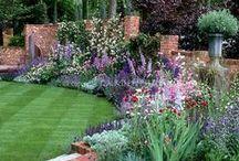 Záhrady /  bylinky, kvetinky
