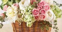 Záplava kvetov / farebné lány kvetov, kvitnucich stromov a farieb, ikebany, aranžovanie pre rozne priležitosti, kytice