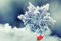 KAR TANESİ / SNOWFLAKES / üç şeyle birlikte yağar kar. bir, sessizlik iki, herkes soğuk dememi bekleyecek şimdi. hayır, sessizlik üç, evet sessizlik karla birlikte gökten kediler, ağaçlar bile duyar beyaz bir sessizlik yağar...  İsmail Uyaroğlu