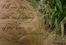 Writing :: My Passion | My Livelihood / by Jacqui Barrett-Poindexter