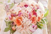 Love: Beautiful Blooms