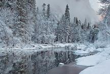 winter / by Maria Kloczko
