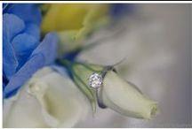 Blue&Yellow Wedding