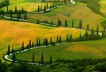 Tuscany  / by izabella szuromi