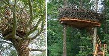 INSPIRACJE   I   Młyn - domki na drzewie / po co komu domek na drzewie? to wieża widokowa, tajna kryjówka, baza, samotnia, miejsce do zabawy i do czytania książek, do picia herbaty i do rozmyślania przy księżycu...dla małych i dużych! już niebawem budujemy w MŁYNIE domek na drzewie!