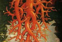 Beasts and Symbols: My gallery of Art / Creature leggendarie | Creature alate | Miti e simboli del paganesimo variamente 'riusati' dal cristianesimo