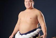 Yokozuna The Great Hakuho