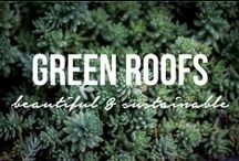 Green Roofs / Green roofs, sustainable building systems.