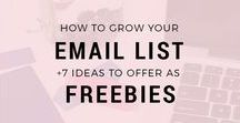 Grow Your Email List / Email list building tips for small business owners, bloggers, creatives and entrepreneurs looking to build bigger lists and sell more products and services.