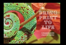 Printed by Chameleon Creative Group