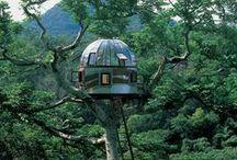 9- tree house
