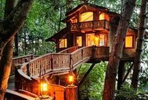 Tree House Life / Living in a tree - small house, big world!