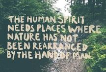 Tree & Nature Quotes / Beautiful, inspirational, and funny quotes about trees and nature.