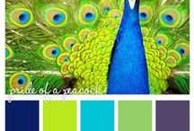 Color Palettes & Paint Schemes / Paint and color inspiration with great palettes and imaginative schemes.