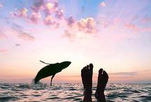 ~ get lost / Travel