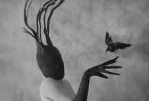 Oddities / Curiouser and curiouser