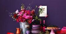 קירות בסגול | Purple Walls /  עמוק יוקרתי או לבנדר רגוע - איזה גוון של סגול יתאים לחדר שלכם?