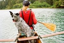 PETS & TRAVEL / To travel is to live, and to live to be in tune with nature and your loved ones - this includes our furry friends. We have found some nifty ideas to make traveling with your pets fun and easy as well as links to some pet friendly places to visit.