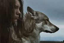 StoryBoard - Werewolves