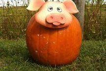 Halloween Varkens / Leuke pompoenen - Halloween Pigs