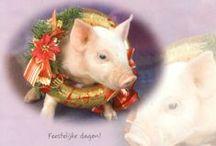 Kerstkaarten 2 / sfeervolle Kerstkaarten gekregen van vrienden