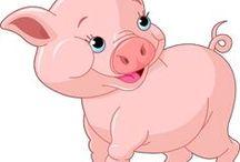 Varkensplaatjes / leuke plaatjes van varkens