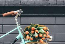 ~ Flowers~