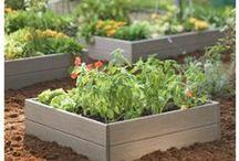 Garden DIY, Permaculture, Homesteading
