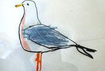 illustration - seagull / illustration - Seagull