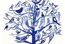 illustration - bird 1 / illustration -Bird