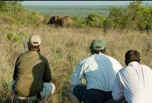 Walking at Sosian / Guided walking safaris in the bush at Sosian, Laikipia, Kenya.