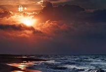 Sea Shore / by Marine Mom