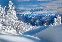 Winter magic / by Anna K