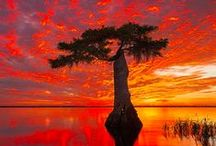 Breathtaking Sunsets / by Pilar Pena-Penton