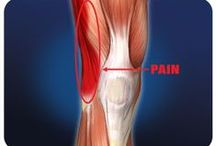 Upper Leg  / Injuries, exercises, products