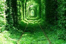 Groen...