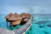 Travel - Maldives / by A. S.