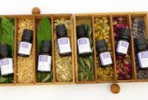 Aromatherapy & Essential Oils / The beauty of aromatherapy, essential oils, blends and more.