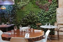 Commercial Design / Interior Design and Architectural Elements for Public Spaces