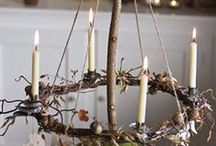 Holiday Craziness / Different Holiday Decoration Ideas and DIYs