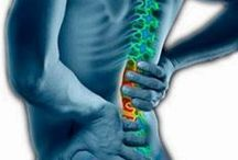 Back Pain / Tips, products, and solutions to help manage and prevent back pain.