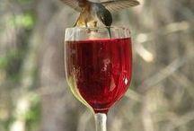 Κρασιά // Wines...