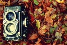 ~I heart Cameras~ / My camera obsession board lol / by Jessica Kraeer