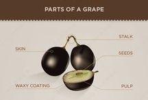 Infografías Vino / Tablas e Infografías sobre el mundo del vino